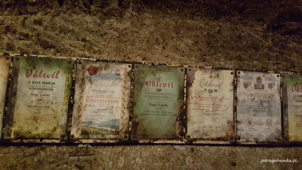 dyplomy w winnej piwniczce