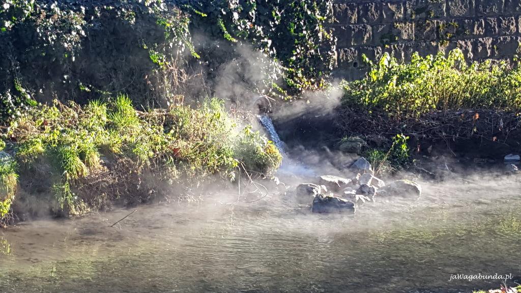 para wodna unosząca się nad strumieniem