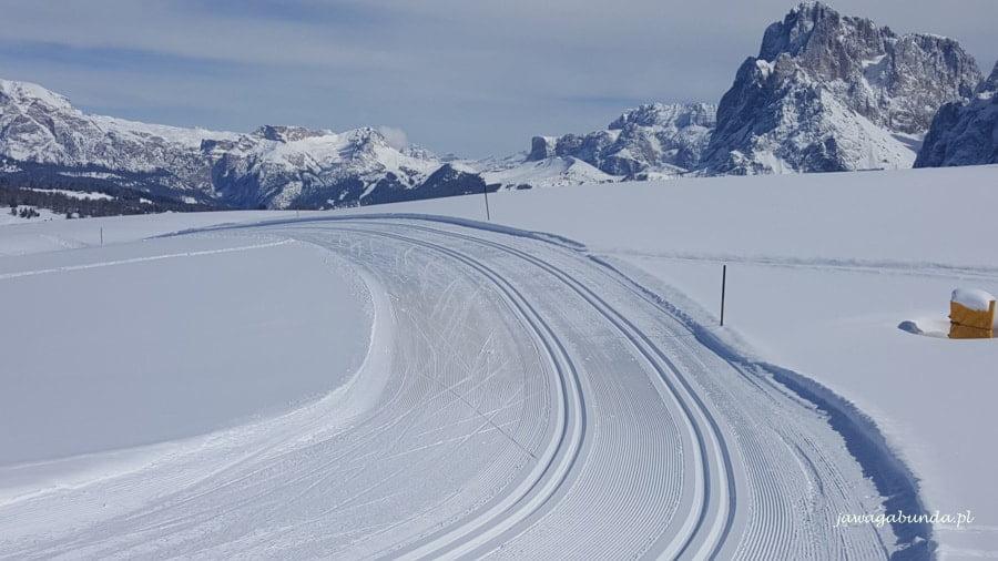 znakomicie przygotowane trasy biegowe na Alpe di Siusi