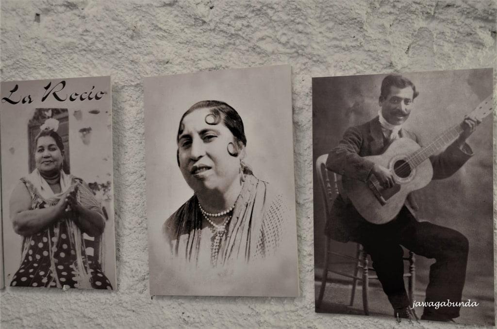 flamenco klub obrazy