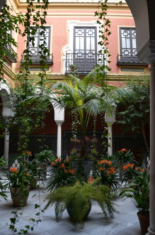 kolorowy dom i rośliny