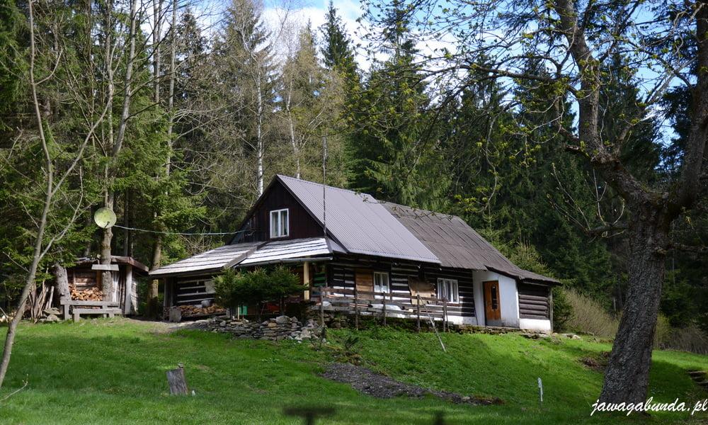typowa,górska,drewniana chata
