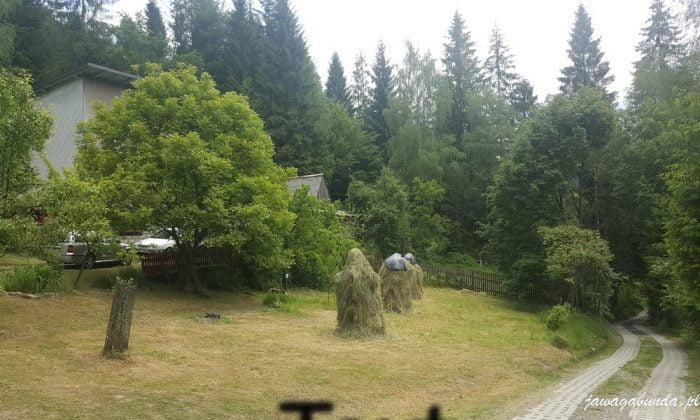 kopki siana na łące w górach