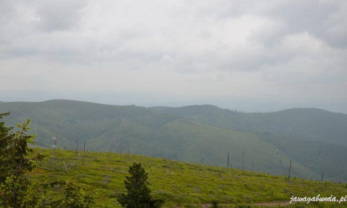 góry porośnięte lasami