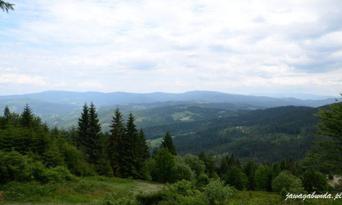 widok na zalesione góry
