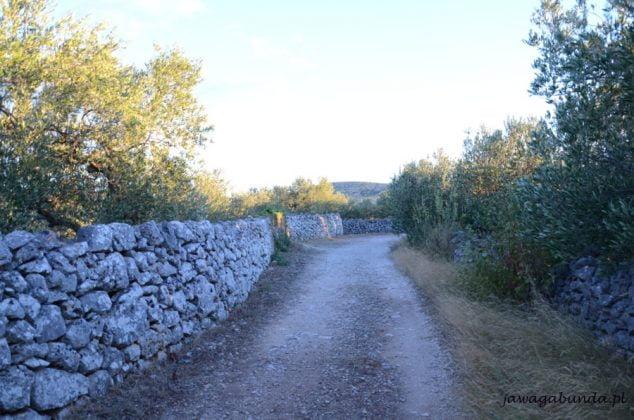 kamienne płoty wzdłuż drogi na Brac