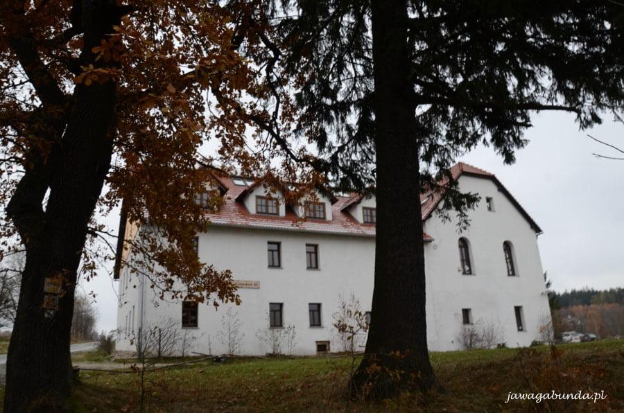 duży biały dom ukryty za drzewammi