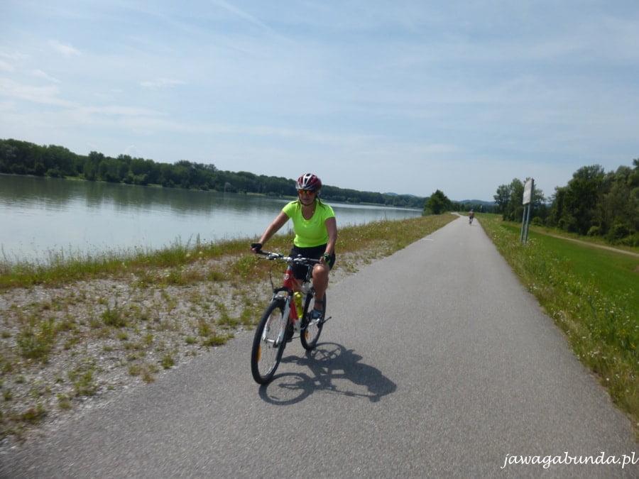 rowerzysta na ttasie rowerowej nad Dunajem