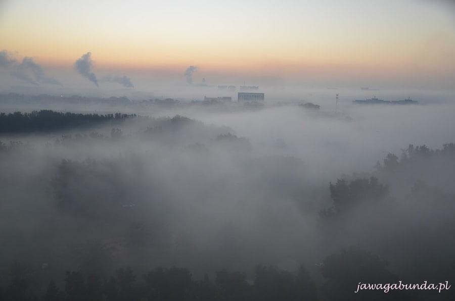 mgła, a w niej zatopione budynki i drzewa