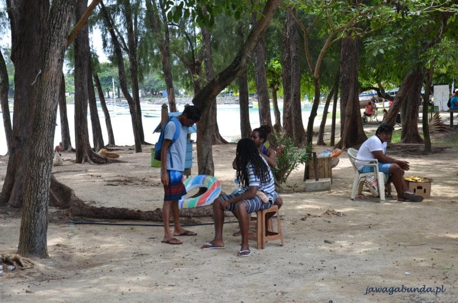 mężczyźni siedzący na ławce wśród drzew