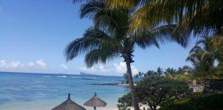 plaza, palmy, niebieskie morze