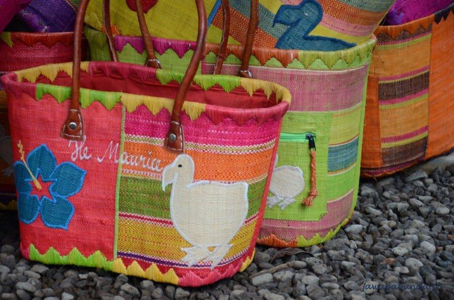 wizerunek ptaka Dodo na torbie
