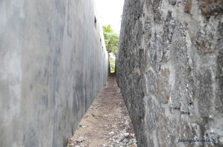 ścieżka pomiędzy murami