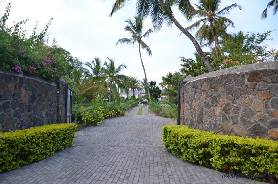 droga prowadząca do domu