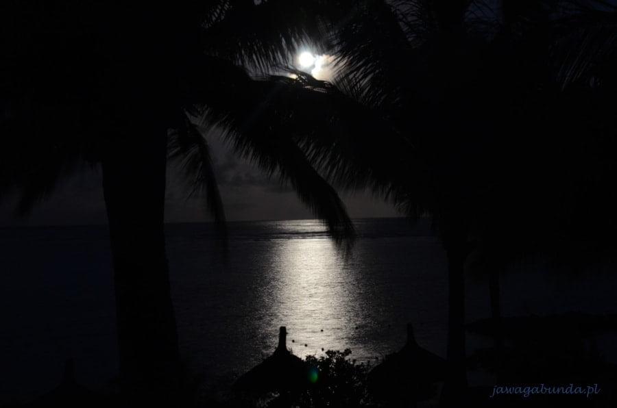 pełnia księżyca nad morzem w tle palmy