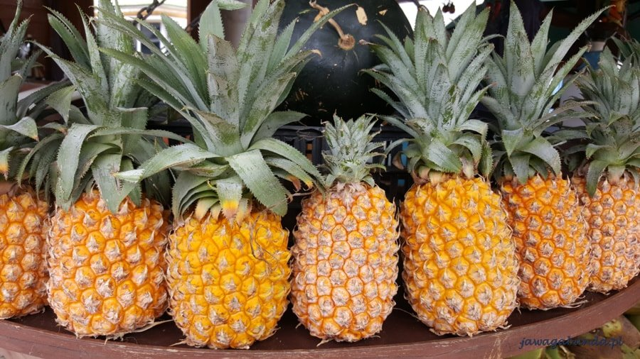 świeże ananasy