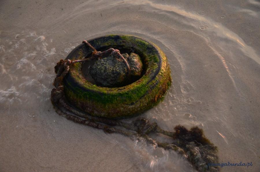 liny morskie oświetlone słońcem
