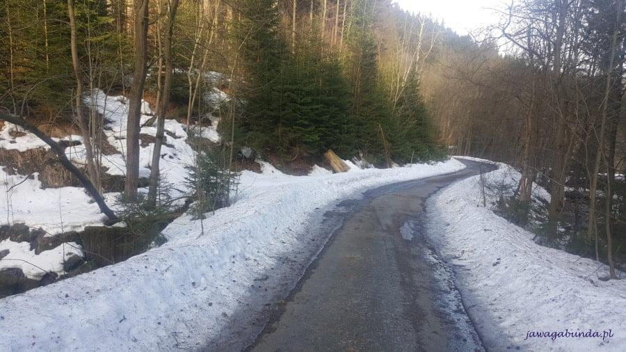 asfaltowa droga a wokół śnieg