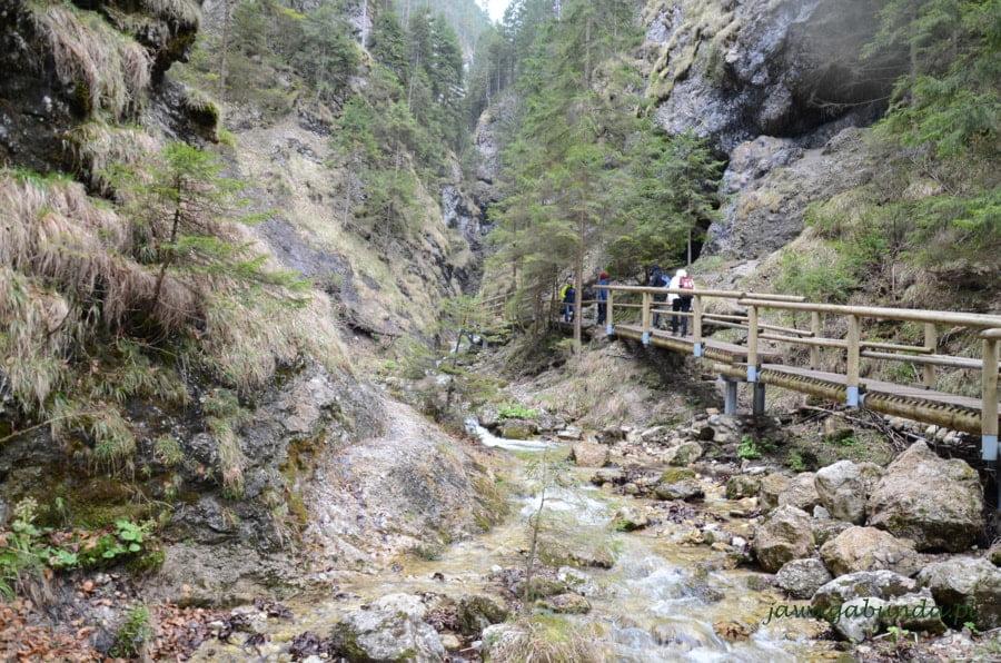 drewniane pomosty do przejścia nad potokami w górach