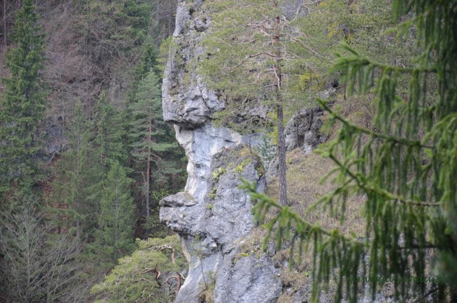 skała w kształcie ludzkiej twarzy