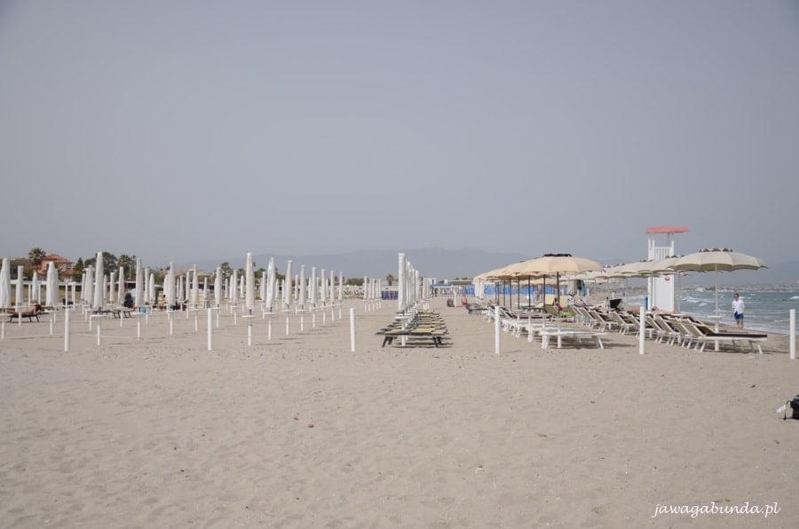 plaża z licznymi leżakami