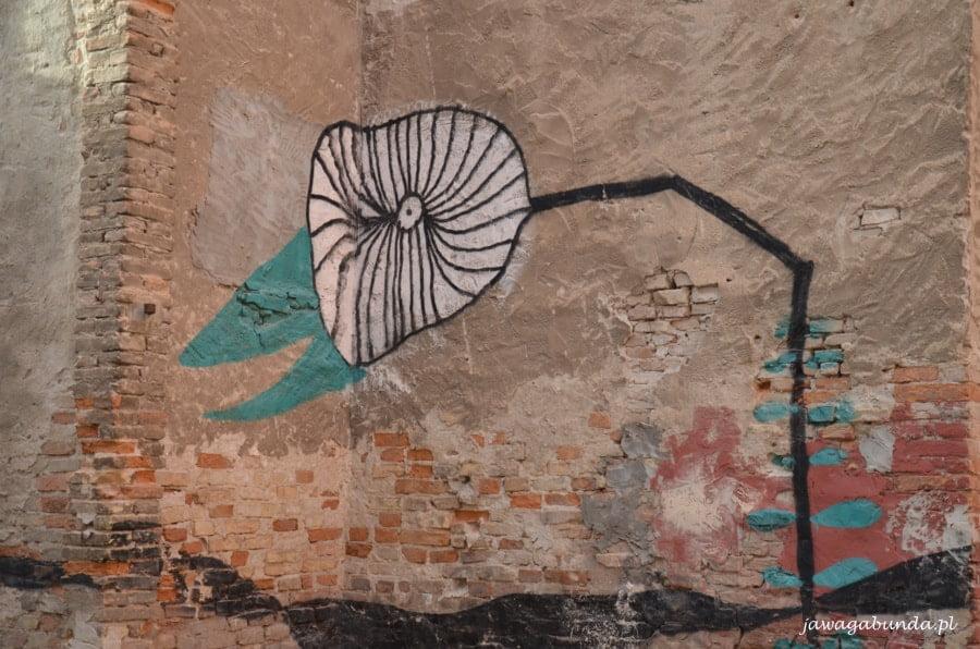 malowidła na murach domów