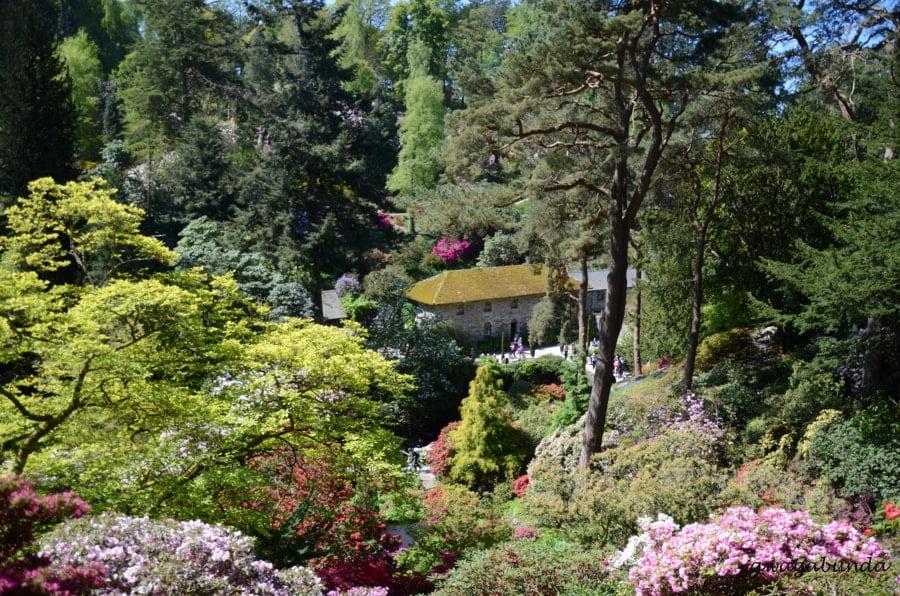 ogród i kamienny dom w dole