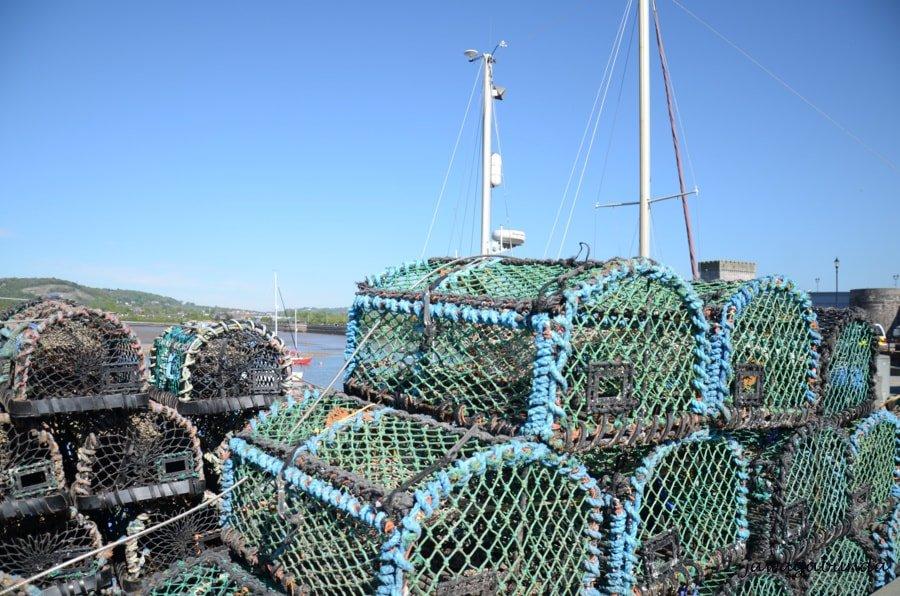 sieci w formie pudełka do połowu homara