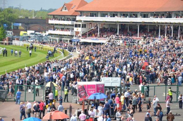 tłum ludzi na wyścigach konnych