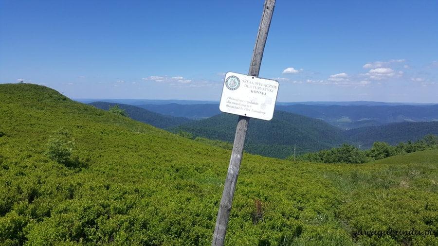 ścieżka dla koni w górach