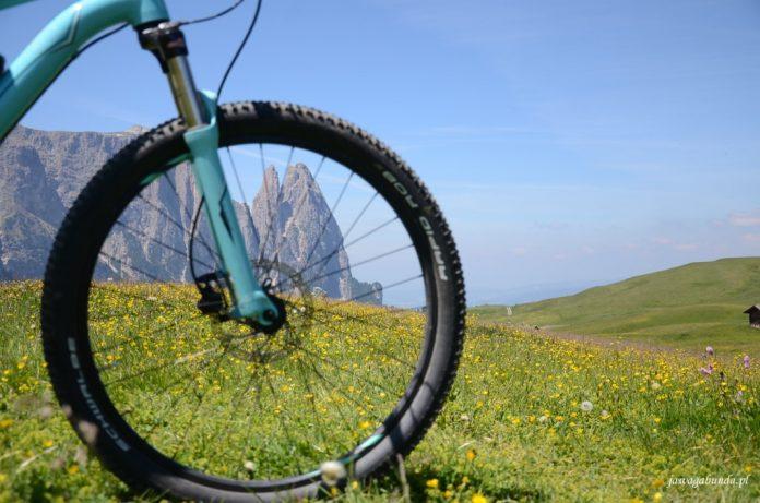 koło roweru i widoczne przez nie góry