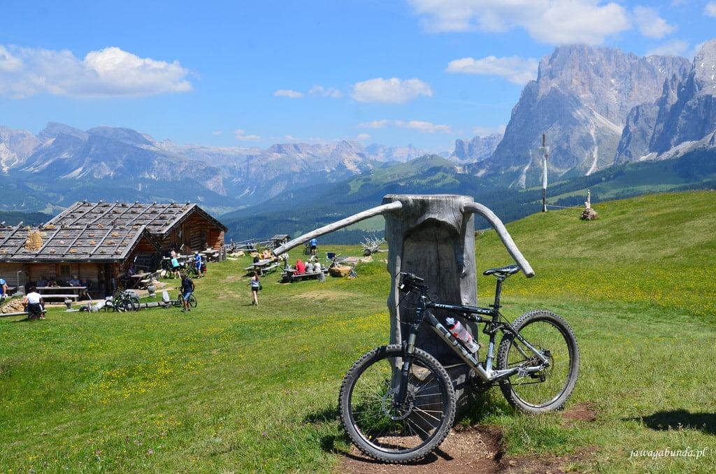 rower opaty o pień w tle wysokie góry