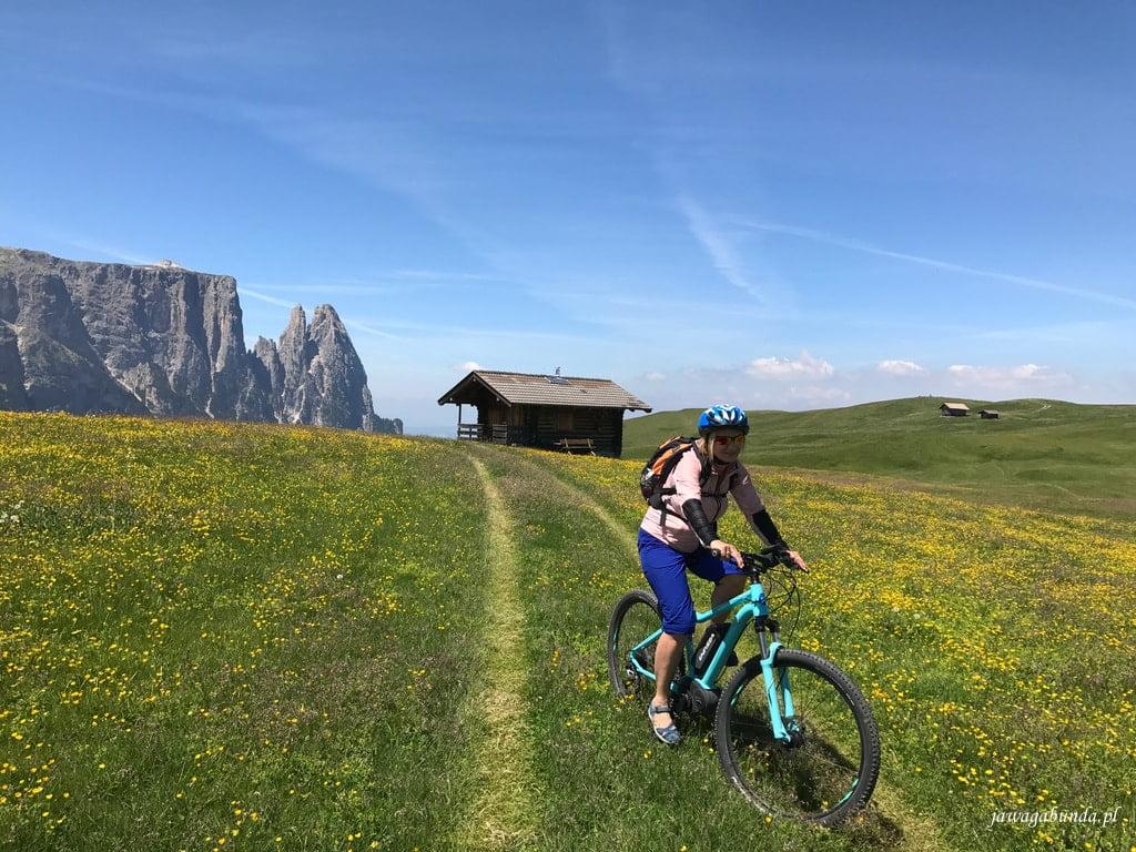 łąka, kobieta na rowerze i góry