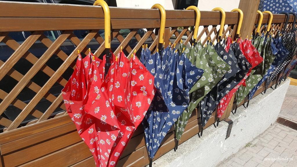 parasolki z symbolami szarotki alpejkiej