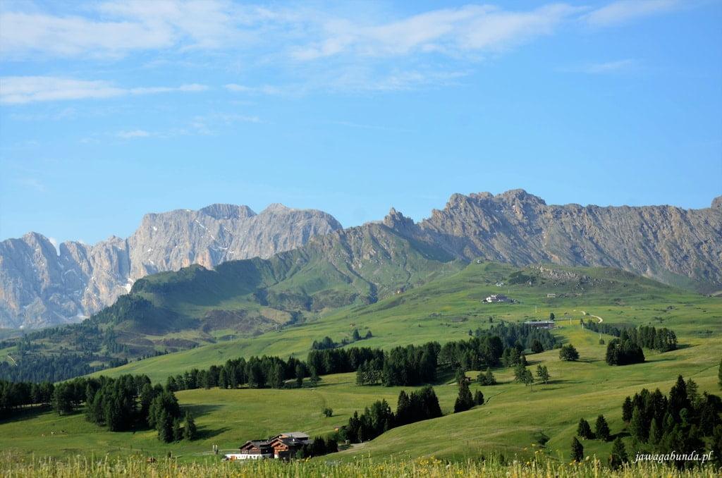alpejska łąka i góry