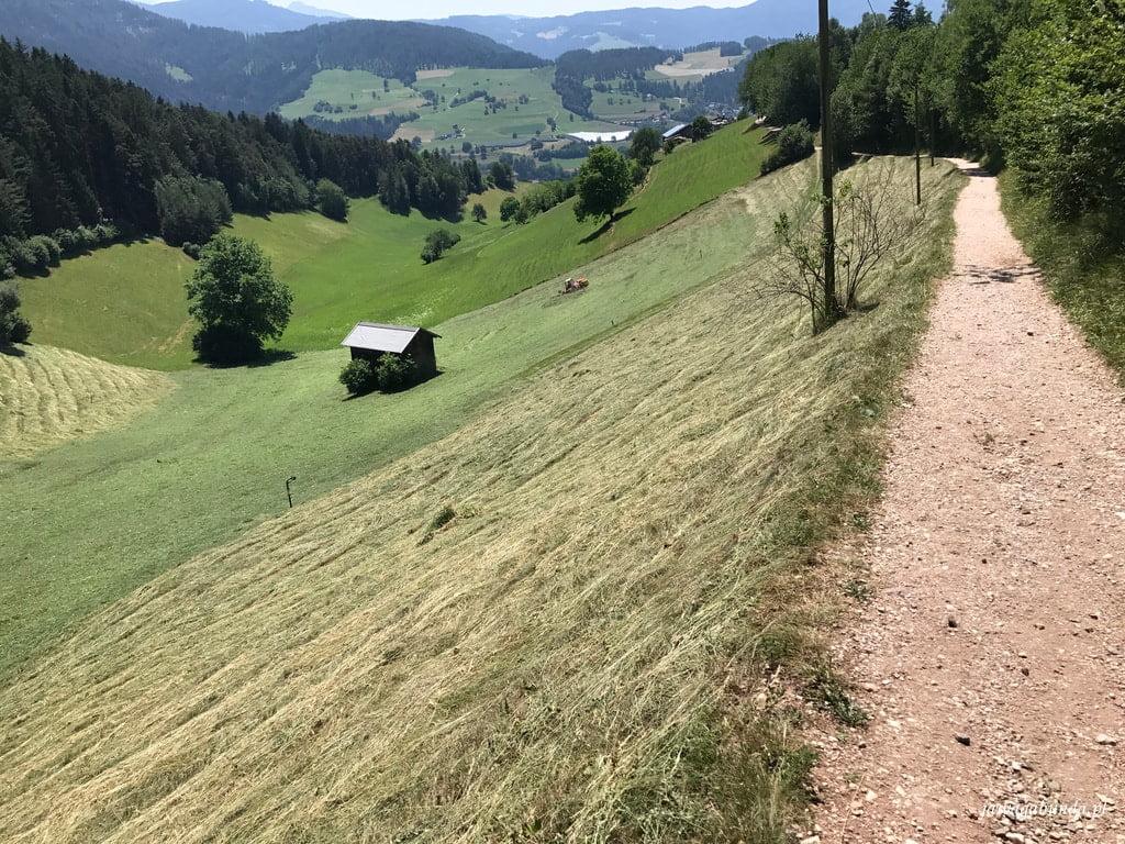 łąka skoszona w górach