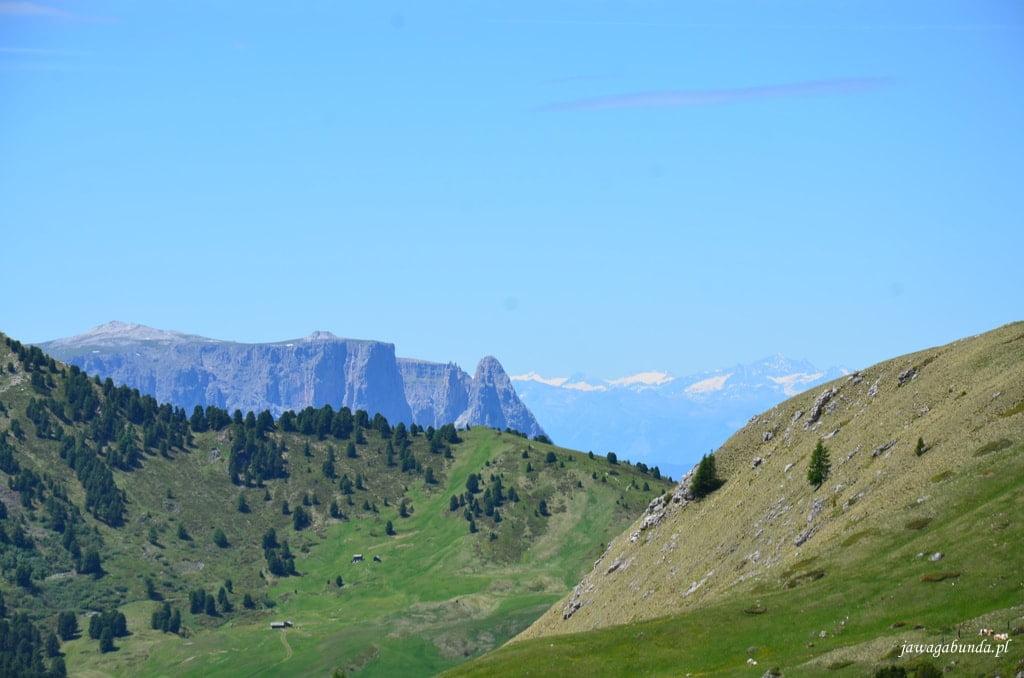 góry w tle ośnieżone szczyty Alp