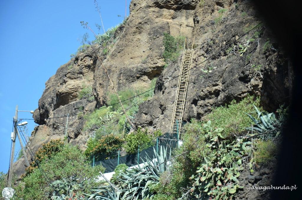 Drabina -zamiast schodów - do wejścia do domu