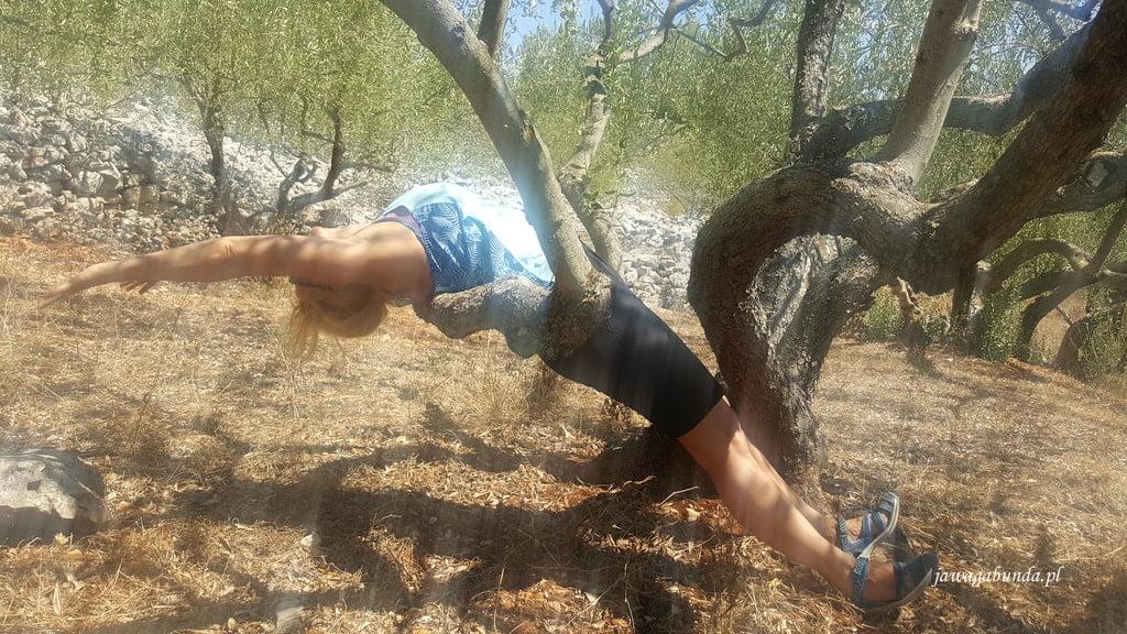 kobieta robi yogę wygięcia do tyłu na drzewie