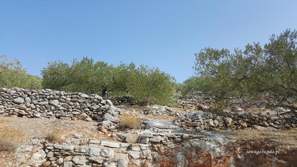 kamienne murki a przy nich drzewa oliwkowe