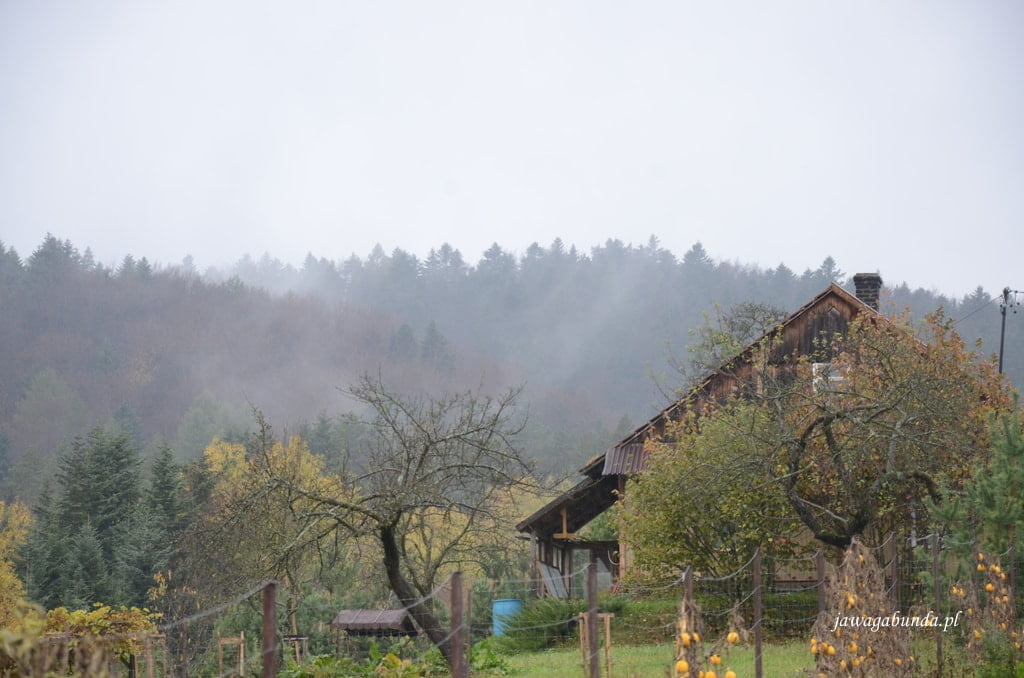 drewniana chata w górach i mgły