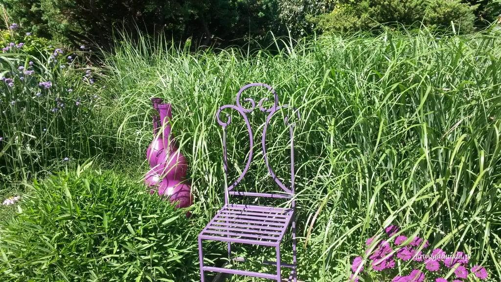 trawy i fioletowe krzesło