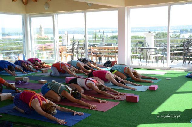 asany yogi