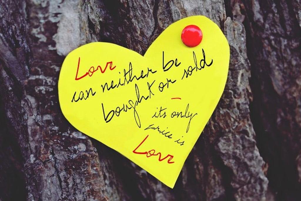 żółta karteczka w kształcie serca przypięta na drzewie