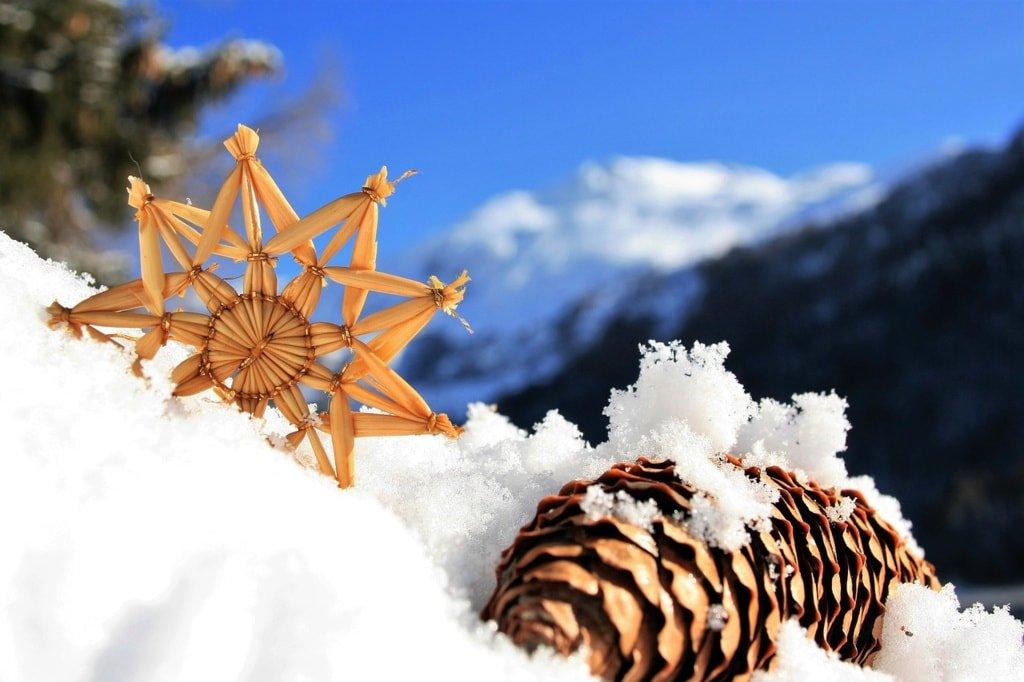 szyszka i gwiazdka na śniegu