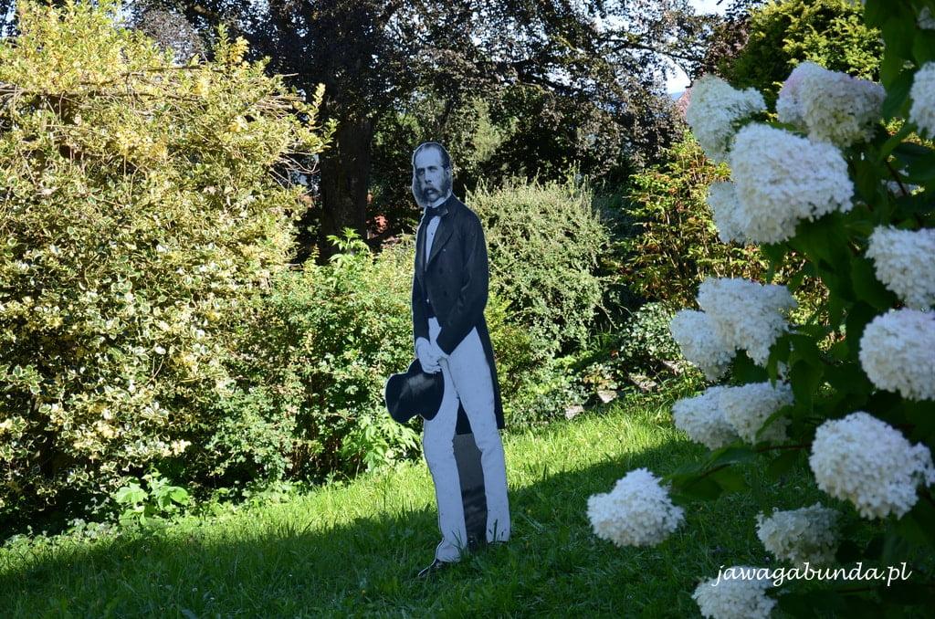 mężczyzna na spacerze w ogrodzie