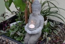 Rośliny w doniczce i kamienna figurka ze świecą