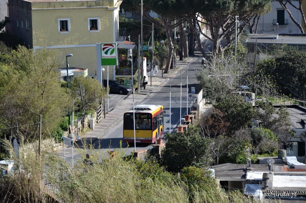 mały autobus na drodze widoczny z góry