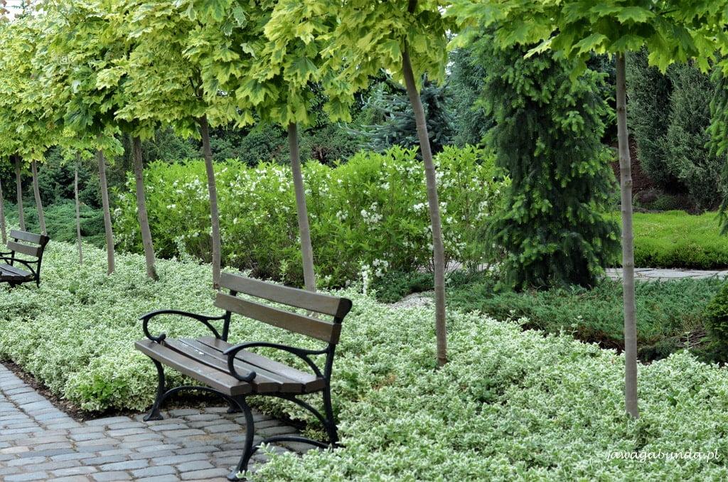 Ogrody Kapias Goczałkowice