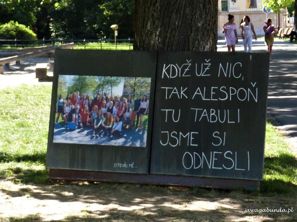 zdjęcie dzieci szkolnych